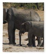 African Elephants Mother And Baby Fleece Blanket