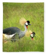 African Gray Crown Crane Fleece Blanket