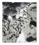 African Hawk Eagle 2 Fleece Blanket