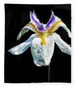 African Iris Raindrops Fleece Blanket