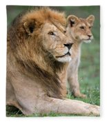 African Lion Panthera Leo With Its Cub Fleece Blanket