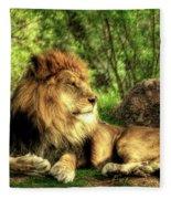 African Lion  Fleece Blanket