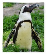 African Penguin Fleece Blanket
