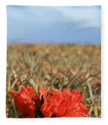 African Tulip Blossom Over Pineapple Field Aloha Makawao Fleece Blanket