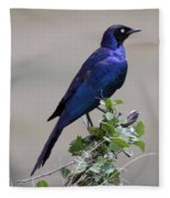African White Eye Starling Fleece Blanket