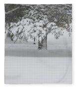 After The Blizzard Fleece Blanket