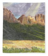 After The Monsoon Organ Mountains Fleece Blanket