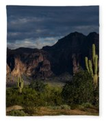 After The Rain In The Superstitions  Fleece Blanket