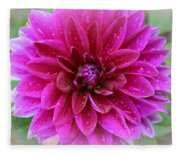 After The Rain - Purple Dahlia Fleece Blanket