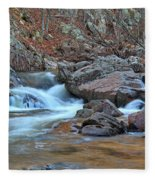 After The Rains On Pickle Creek 1 Fleece Blanket