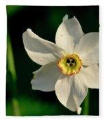 Afternoon Of Narcissus Poeticus. Fleece Blanket