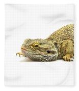 Agama Lizard  Fleece Blanket