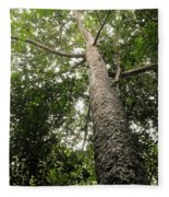 Agathis Borneensis Tree Fleece Blanket