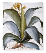 Agave, 1613 Fleece Blanket