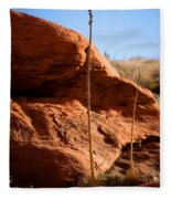 Agave Pals Fleece Blanket