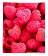 Agenda For Today ... Raspberry Jam Fleece Blanket