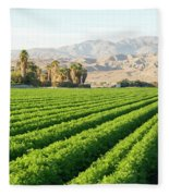 Agriculture In The Desert Fleece Blanket