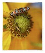 Ailanthus Webworm Moth #5 Fleece Blanket