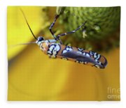 Ailanthus Webworm Moth Fleece Blanket
