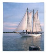 Aj Meerwald Sailing Up River Fleece Blanket