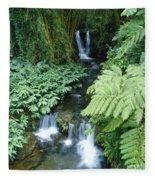 Akaka Falls Stream Fleece Blanket