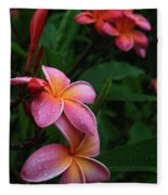 Akeakamai Pua Melia Tropical Plumeria Fleece Blanket