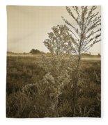 Alabama Autumn Fleece Blanket