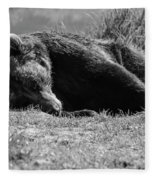 Alaska Grizzly - Do Not Disturb Grayscale Fleece Blanket