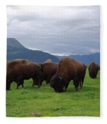 Alaska Wood Bison Fleece Blanket