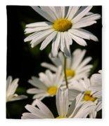 Alaskan Shasta Daisy Fleece Blanket