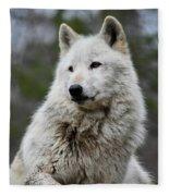 Alawa The Wolf Rests Fleece Blanket