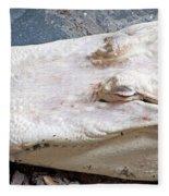 Albino Alligator Fleece Blanket