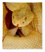 Albino Brazilian Rattlesnake Fleece Blanket
