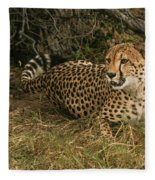 Alert Cheetah Fleece Blanket