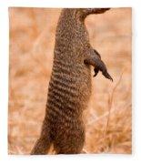 Alert Mongoose Fleece Blanket