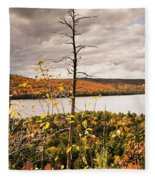 Algonquin Autumn Fleece Blanket