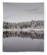 All Colors Of Gray. Panorama Fleece Blanket