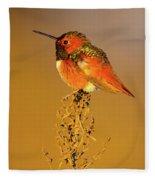 Allen's Hummingbird II Fleece Blanket