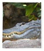 Alligator 1 Fleece Blanket