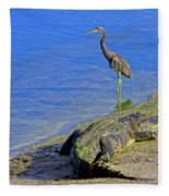 Alligator And Blue Heron Fleece Blanket