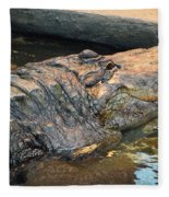 Crocodile Time  Fleece Blanket