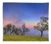 Almonds And Moon Fleece Blanket