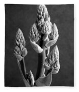 Aloe Maculata Stalk Fleece Blanket