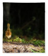 Alone And Searching Fleece Blanket