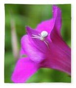 Along Came A Spider  Fleece Blanket