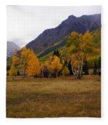 Along The Alpine Loop 2 Fleece Blanket