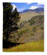Along The Hell Roaring Creek Trail Fleece Blanket