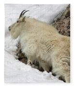 Along The Rock Fleece Blanket