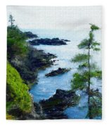 Along The West Coast 1 Fleece Blanket