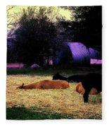 Alpacan Twilight Fleece Blanket